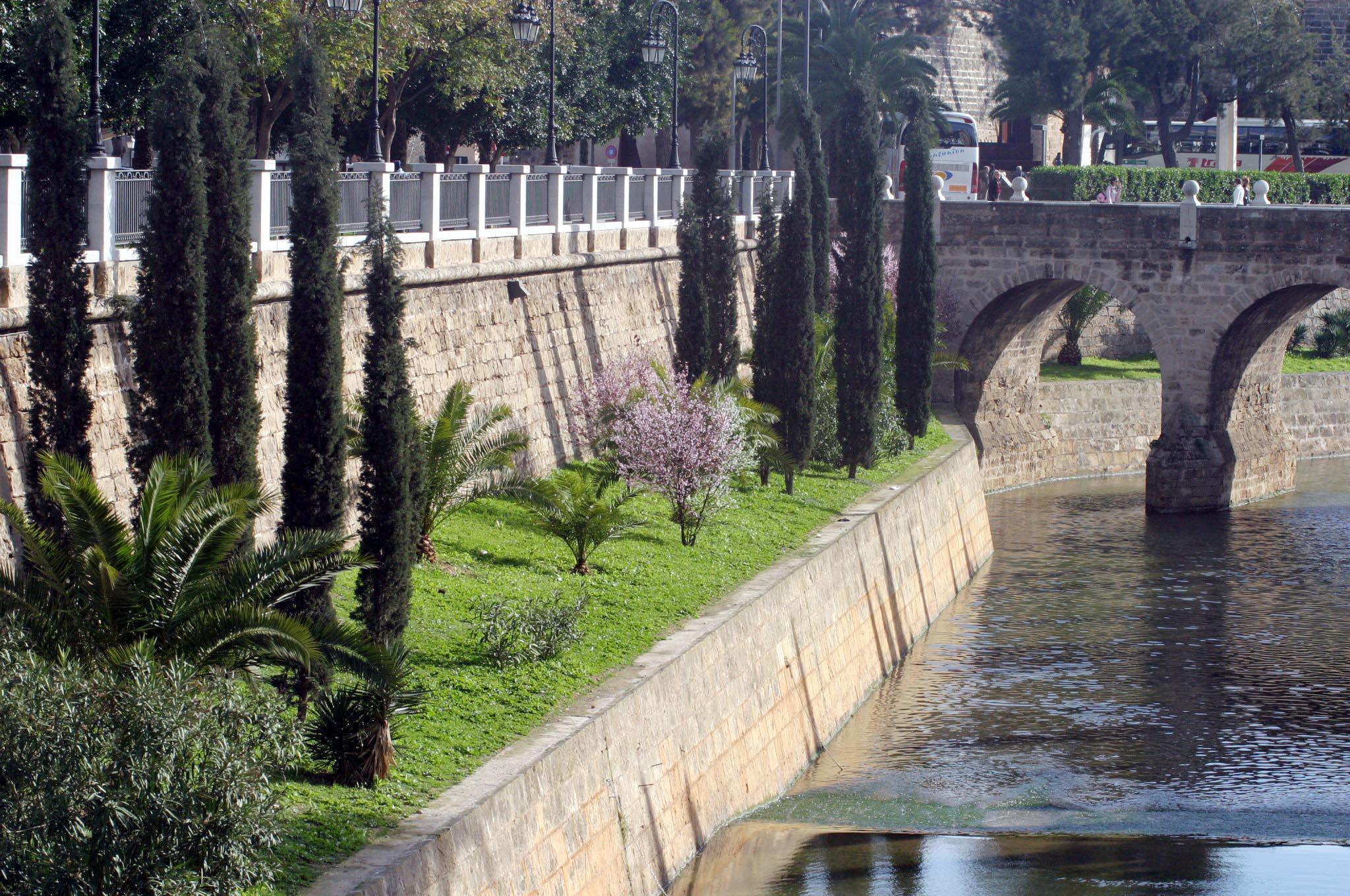 Der grüne Paseo Mallorca ist auch sein Verdienst