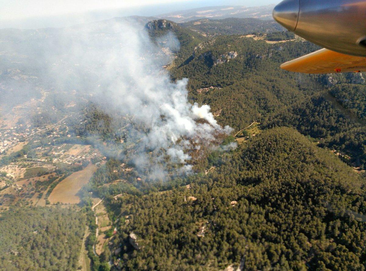 Luftaufnahme Waldbrand Puigpunyent